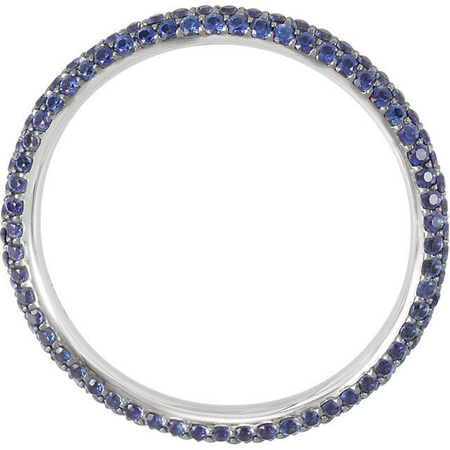 Item # 212101PP View 2 - Platinum Sapphire Eternity Band